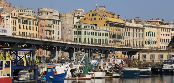 "Il ""Decreto Genova"" e le procedure accelerate"